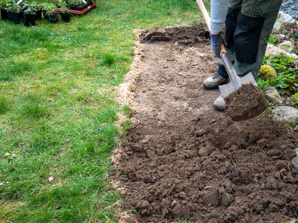 Bienenstauden - Insektenfreundlicher Pflanzenversand Bodenbearbeitung und Bodenvorbereitung